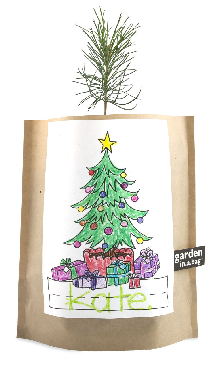Kids Garden-in-a-bag Christmas Tree - Potting Shed Creations, LTD
