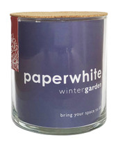 Paperwhite Winter Garden