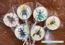 Assorted Insect Lollipops