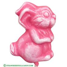 Easter Bunny Lollipop