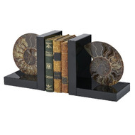 Fossil Bookends