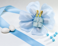 Baby Blue Coccarde Almond Petals Favor