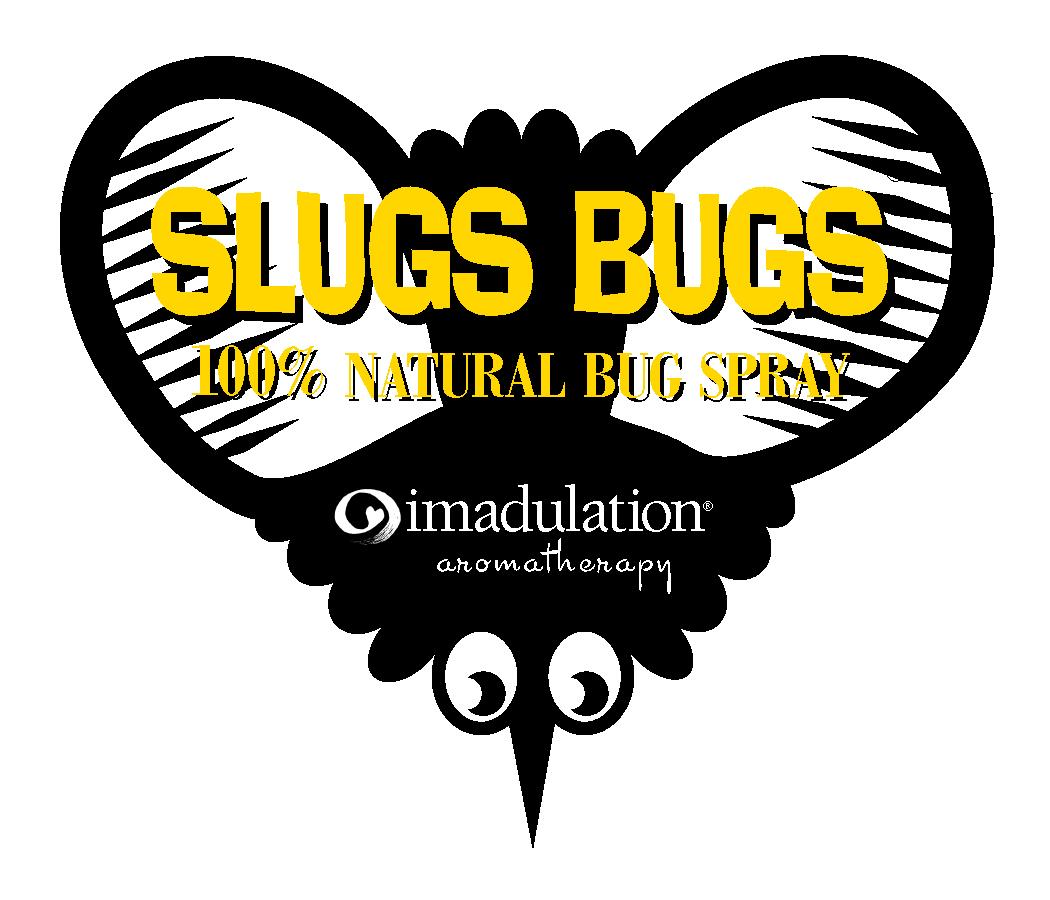 sb-bug-art-for-box-.jpg