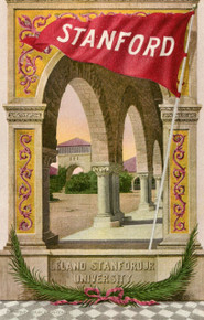 Leland Stanford University Postcard