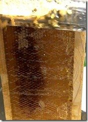 extract honey
