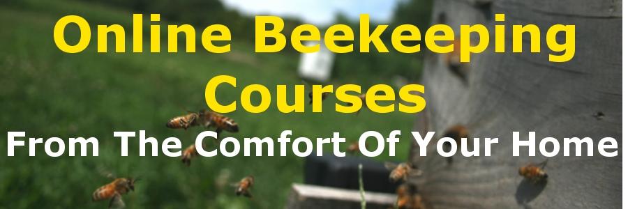 Beekeeping Online Courses