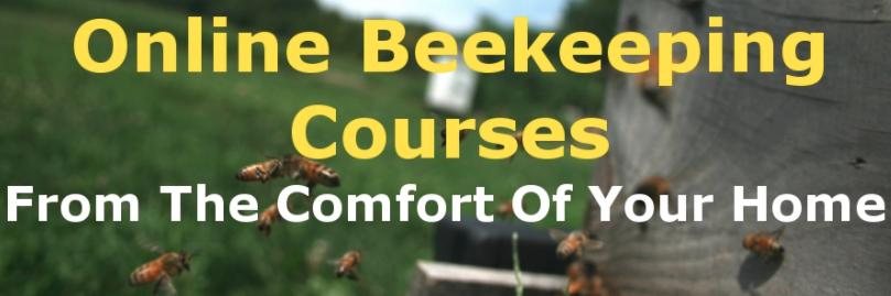 Online Beekeeping Course