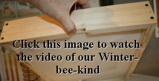 Feeding Bees In The Winter