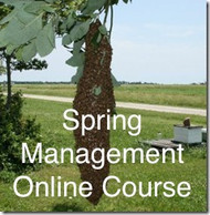 Online Spring Management Course- ONLINE ONLY + 1 Free Month Of Beekeeping Coaching .