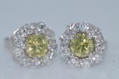 14k Fancy Yellow Diamond Earrings - EK17
