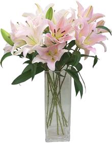 แจกันดอกไม้ C31