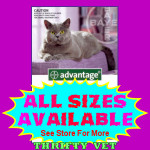 Advantage Flea Control for Cats Over 9 lbs (4 Months)