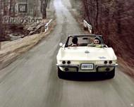 1965 Chevrolet Corvette Sting Ray Poster