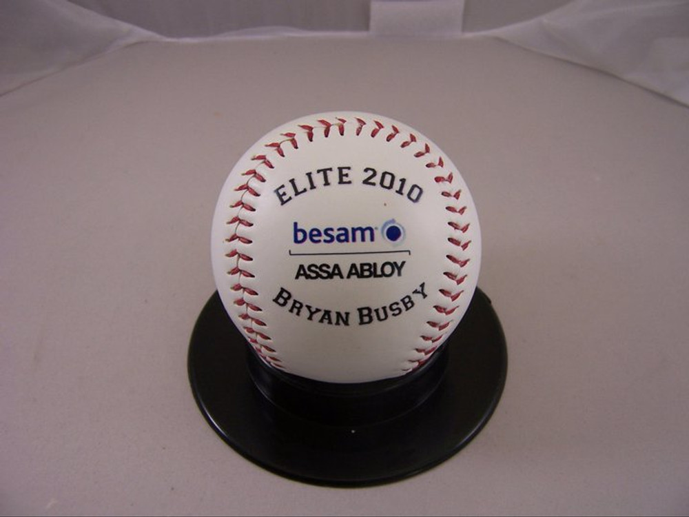 Elite 2010 corporate baseball award