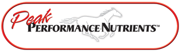 No Sugars or Artificial Flavors – Pure Supplements for a healthier horse.
