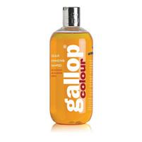 Gallop Colour Shampoo - Chestnut & Palomino