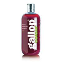 Gallop Colour Shampoo - Bay