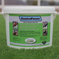 Gastropower Natural Gastric Ulcer Aid 12 lb
