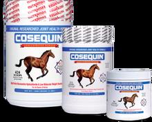 Cosequin Equine Powder 280 gms
