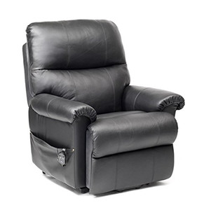 Borg Leather Rise and Recliner Chair