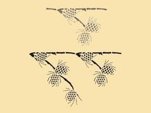 Pine Cone 8 X 13