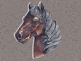 Horse Head Bolo Tie – Silver Finish With Inlaid Brown Epoxy Bolo Tie
