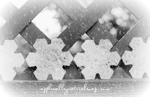 Snowflake soap placemat - Apple Valley Natural Soap