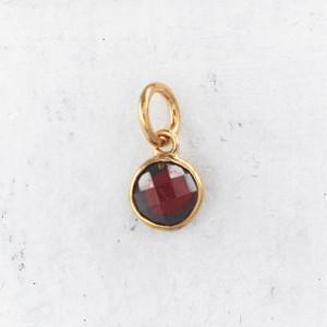 JW00206 Birthstone Garnet - Dark Red - Charm Pendant - Wildflower.Co - Main