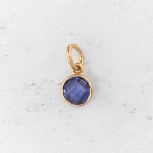 JW00206 Birthstone Sapphire Blue - Charm Pendant - Wildflower.Co - Main