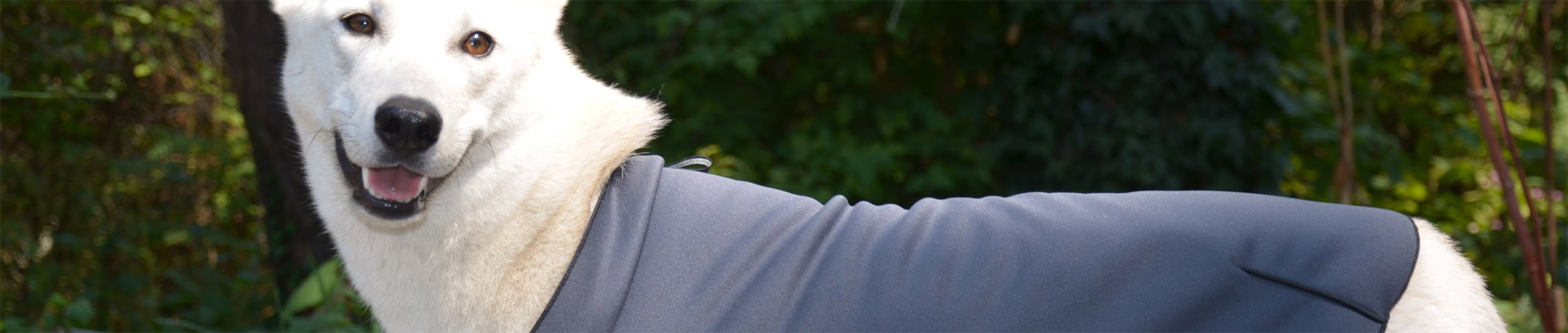 Waterproof Breathable Softshell Dog Coat