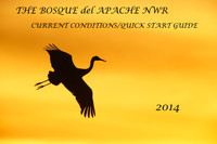 Bosque Quick Start Guide Current Conditions 2014