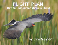 Flight Plan Guide