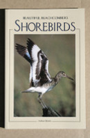 Shorebirds: Beautiful Beachcombers