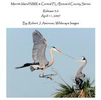 Merritt Island / Brevard County Site Guide