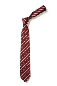 St Cecilia's Catholic Primary School - Tie