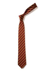 Rice Lane Primary School Tie