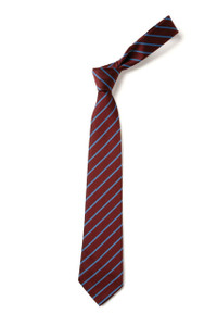 Christian Fellowship School  Tie