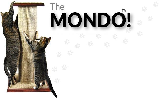 The MONDO™