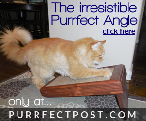 The Purrfect Angle provides your kitty with satisfying alternative scratching positions.