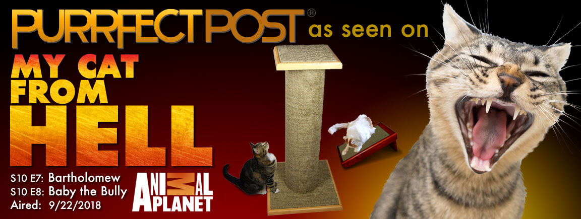 Purrfect Post as seen on Cat From Hell on Animal Planet 9/22/18