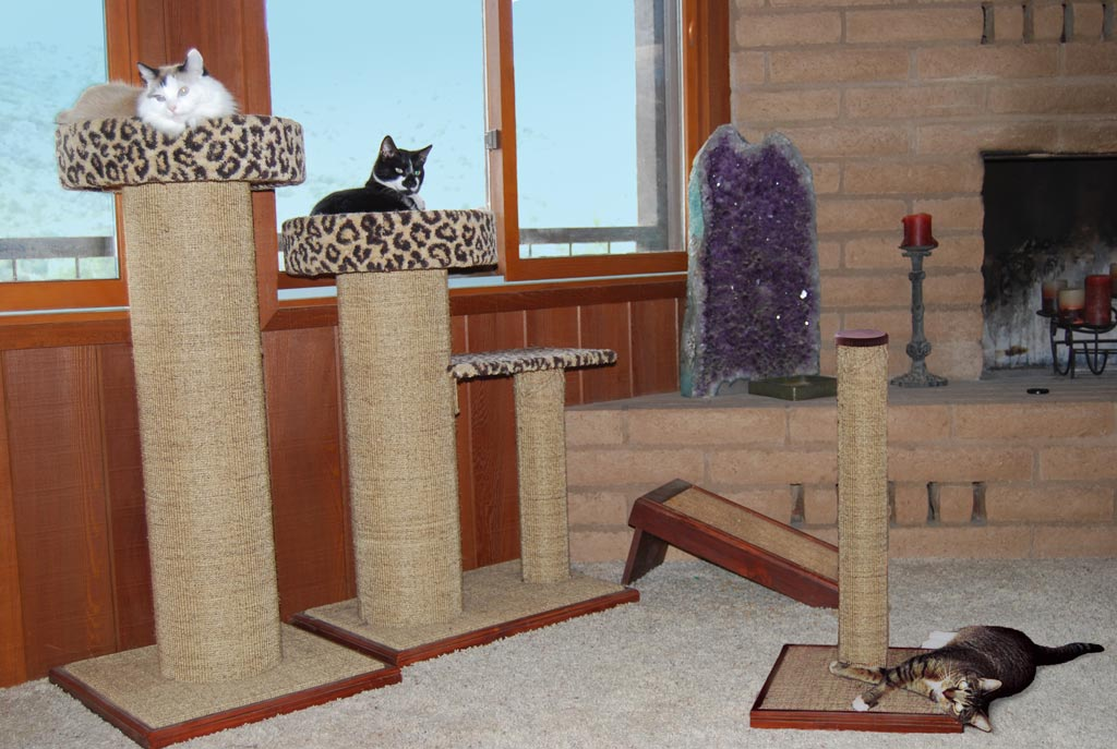 Your cat's scratching post should fit him and the space.