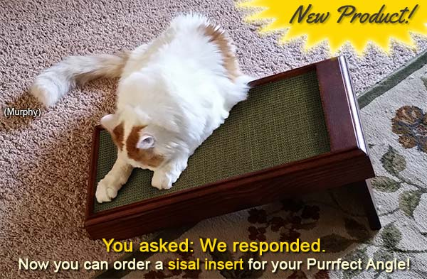 You asked, we responded. Now you can order a sisal insert for your Purrfect Angle.