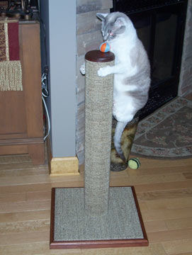 Cats need a sturdy post that won't wobble or fall. Scratching ...