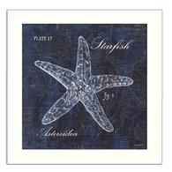 DEW288-712WHT-Starfish-12x12