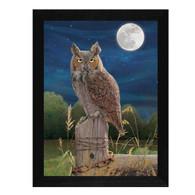 WARD208-276BLK-Night-Owl-12x16