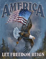 TN342 America-Let Freedom Reign