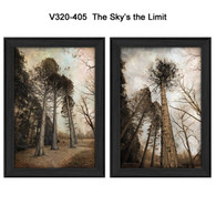 V320-405-The-Sky's-the-Limit