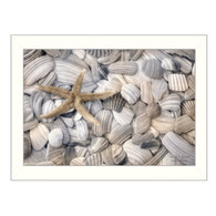 "LD924-712W ""Starfish and Seashells"""