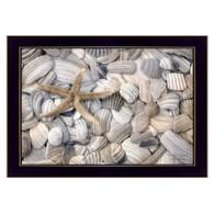 "LD924-712 ""Starfish and Seashells"""