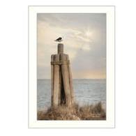 "LD923-712 ""Birds Eye View"""
